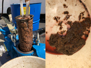 Sludge in Fuel Filter